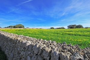 Countryside Properties, Menorca